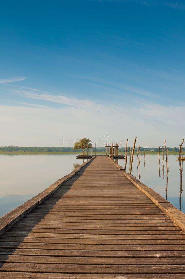 Pilastro di legno in un lago Alba a Soustons, Francia immagini stock libere da diritti