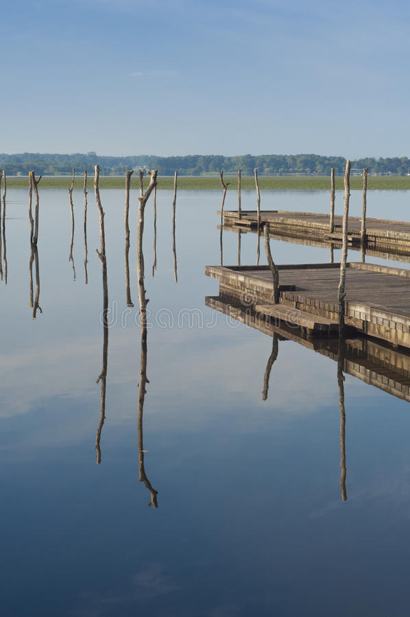 Pilastro di legno in un lago Alba a Soustons, Francia Mattina di estate immagini stock
