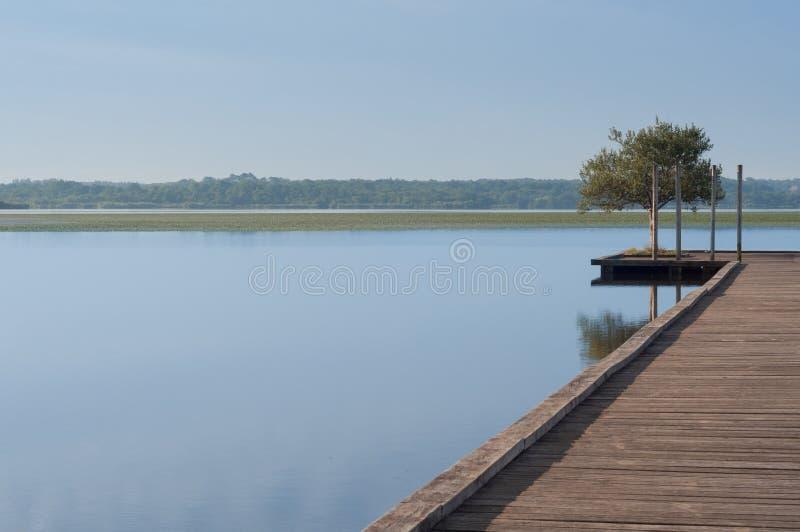 Pilastro di legno in un lago Alba a Soustons, Francia Mattina di estate fotografia stock