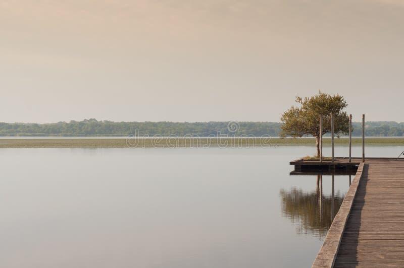 Pilastro di legno in un lago Alba a Soustons, Francia Mattina di estate fotografia stock libera da diritti