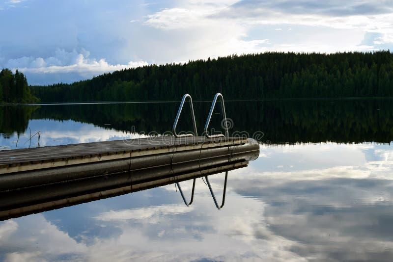 Pilastro di nuoto sul lago calmo con la riflessione fotografia stock