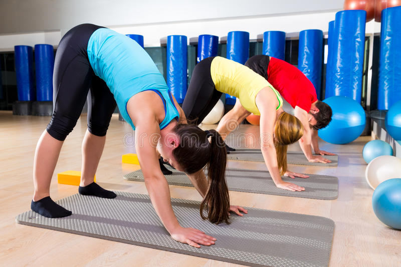 Pilates The Dog stretching exercise people group. At fitness gym royalty free stock image