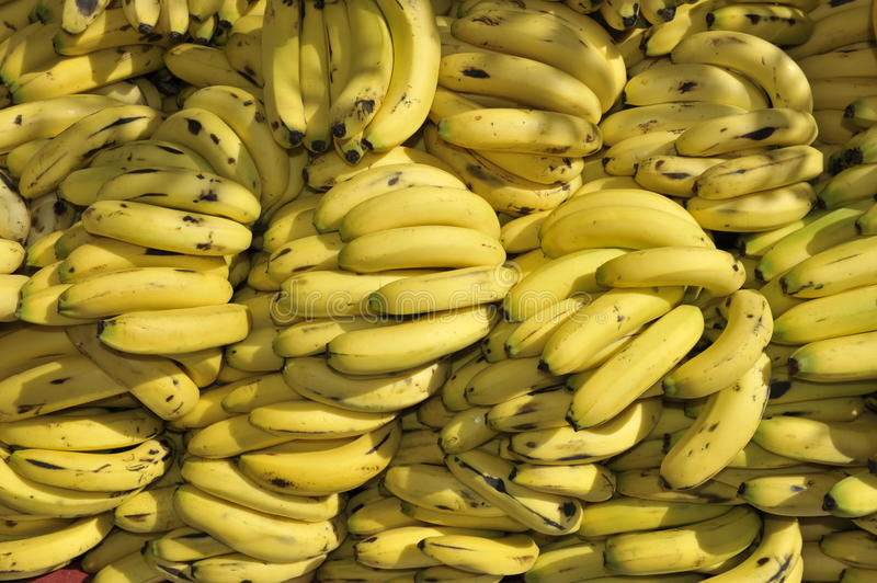 Download Pile of Bananas stock image. Image of color, piled, jdanne - 28515117