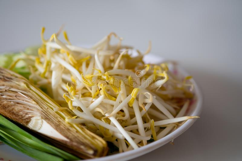 Pile of bean sprouts for eating with Pat-Thai. Close up stock photography