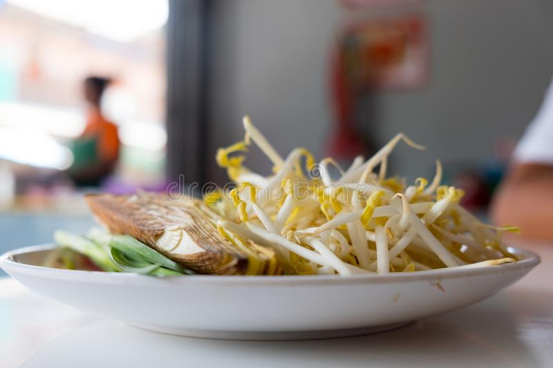 Pile of bean sprouts for eating with Pat-Thai. Close up stock photo