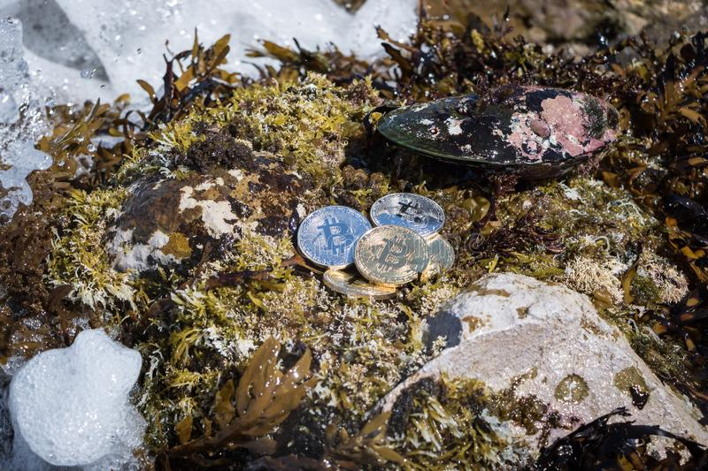 Pile Of Bitcoins In Rough Seas. Physical Bitcoins sitting on reef with rough seas, market wave concept royalty free stock images
