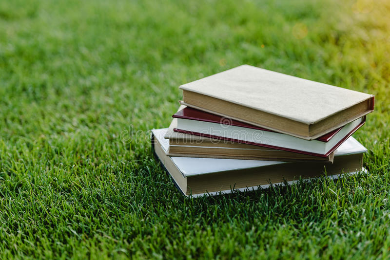 Pile of books on green grass at sunset stock image