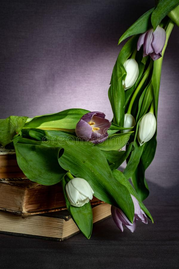 Pile of Books and Tulips royalty free stock image