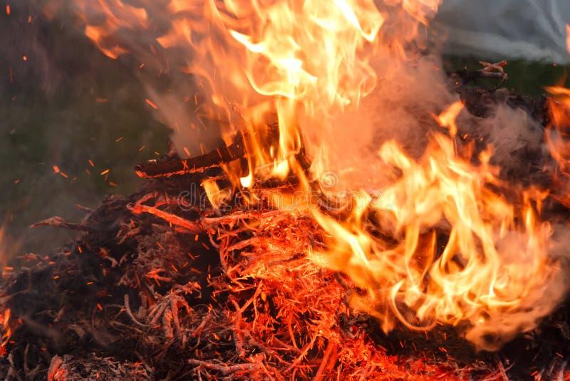 Pile brûlante des membres d'arbre et des feuilles sèches dans le jardin photos libres de droits