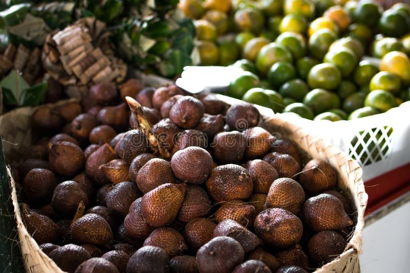 Pile of Brown Fruit With Brown Basket royalty free stock photography