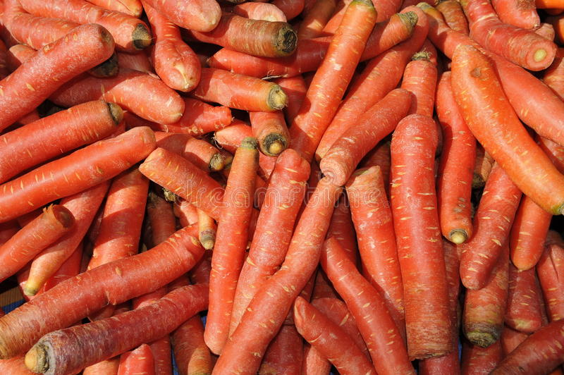 Download Pile of Carrots stock image. Image of nature, natural - 28819065