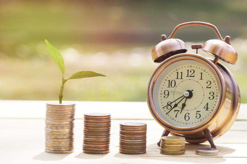 Pile of coins and small tree with alarm clcok. On wood table, concept in grow and save money royalty free stock photography