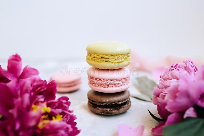 A pile of colorful delicious macaroon closeup with pink peony flowers on a light background royalty free stock photos