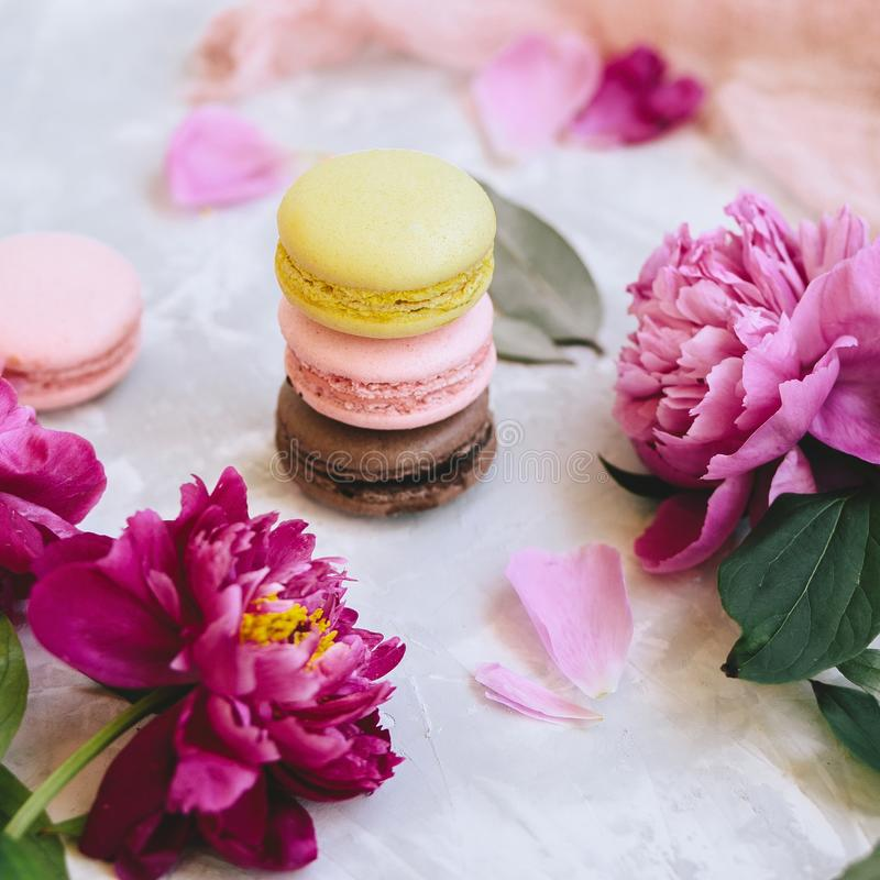 A pile of colorful delicious macaroon closeup with pink peony flowers on a light background royalty free stock photo