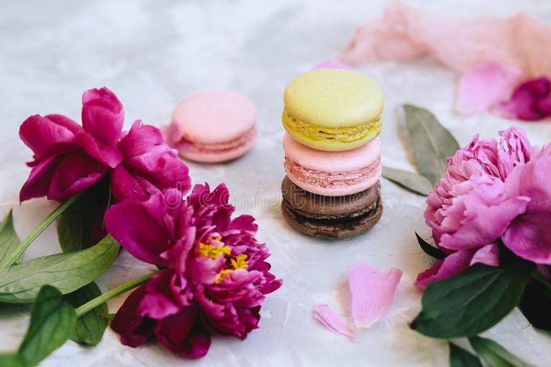 A pile of colorful delicious macaroon closeup with pink peony flowers, petals on a light background concrete stock image