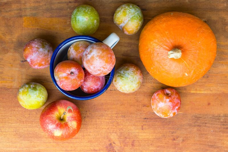 Pile of colorful freshly picked plums Mirabelles red yellow green apples pumpkin on wood garden table. Autumn fall harvest stock images