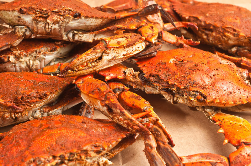 Pile of colossal, steamed and seasoned chesapeake blue claw crabs. Hot out of pot on a brown paper table cover stock image