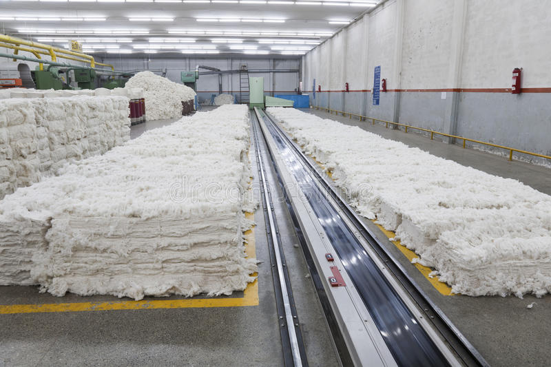 Pile of cotton in blow room