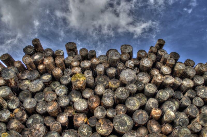 Pile Of Cut Logs Free Public Domain Cc0 Image