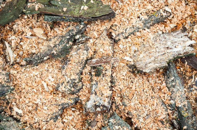 Pile of cut tree bark and wood sawdust royalty free stock photos