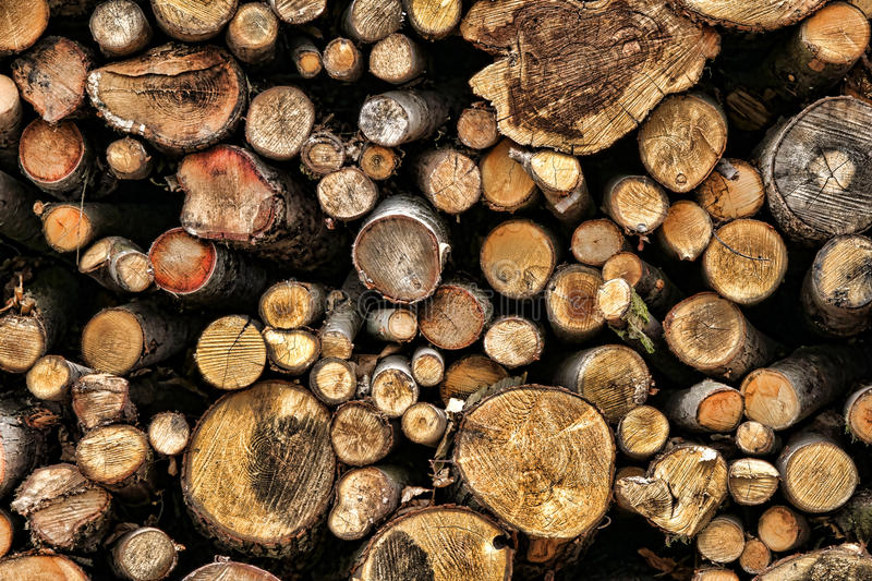 Pile of Cut Wood Logs for Firewood Fuel. And heat source from down forest trees as part of a reforestation growth management program stock photography