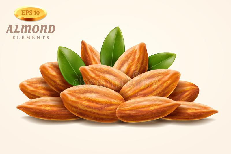 Pile of 3d almond nuts or heap of hazelnuts. Pile of 3d almond nuts or heap of realistic shelled hazelnuts with leaves, walnut seed or fruit kernel snack vector illustration
