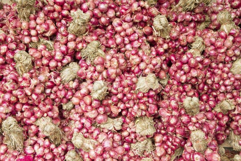 Pile d'oignons rouges photo stock