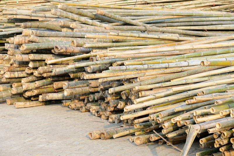 Pile de bambou photo stock