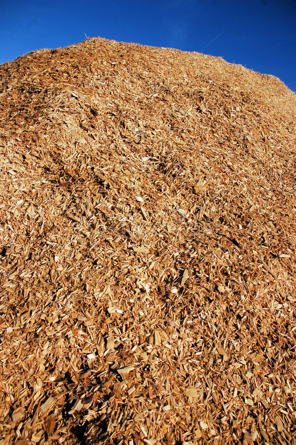 Pile de déchet de bois image libre de droits