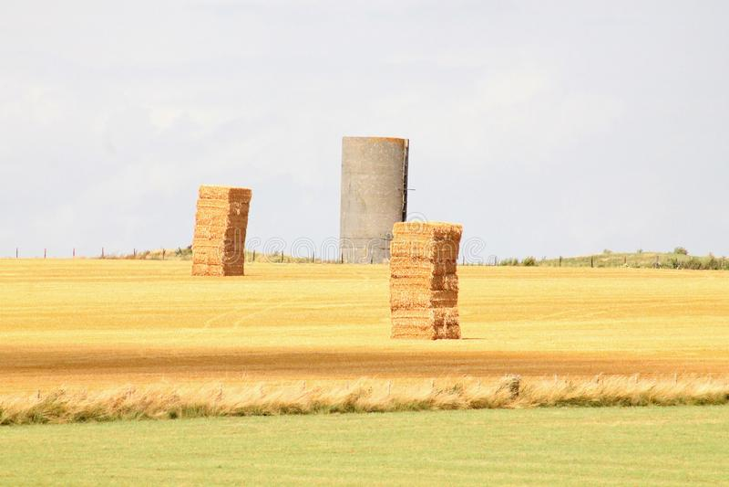 Pile de foin dans un domaine photographie stock libre de droits