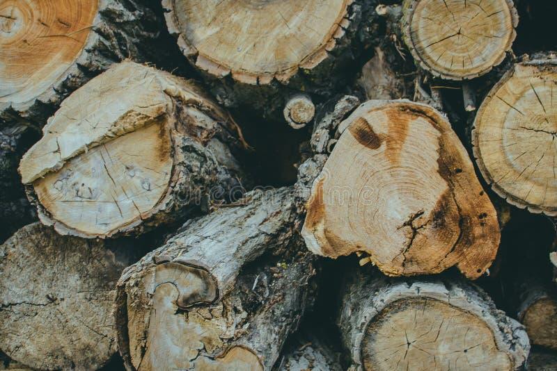 Pile de fond en bois naturel de rondins image libre de droits