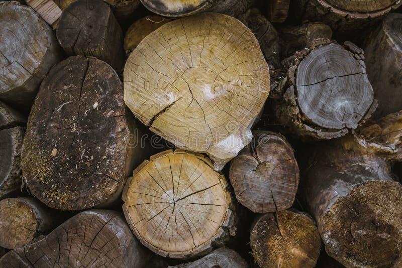 Pile de fond en bois naturel de rondins image stock