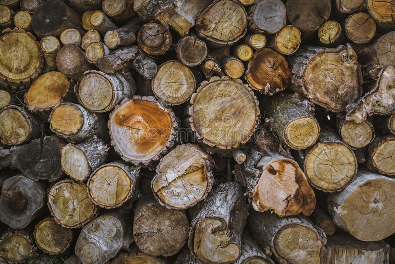 Pile de fond en bois naturel de rondins photos libres de droits