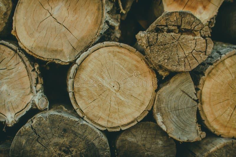 Pile de fond en bois naturel de rondins photo libre de droits