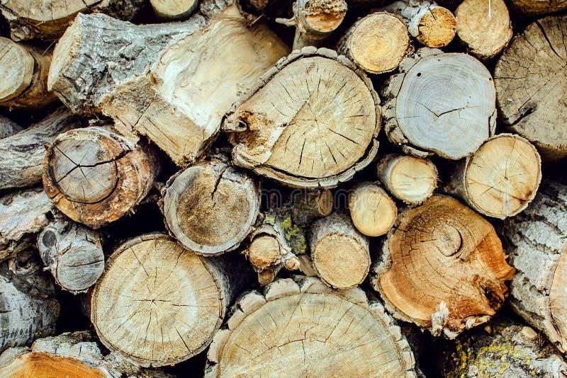 Pile de fond en bois naturel de rondins photographie stock libre de droits