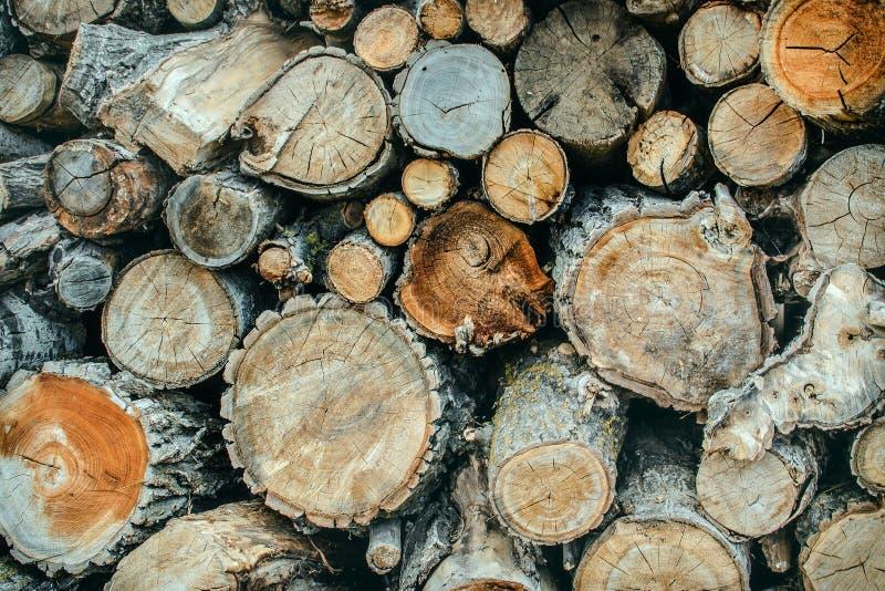 Pile de fond en bois naturel de rondins photo stock