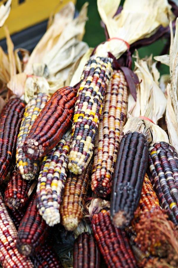 Pile de maïs images stock