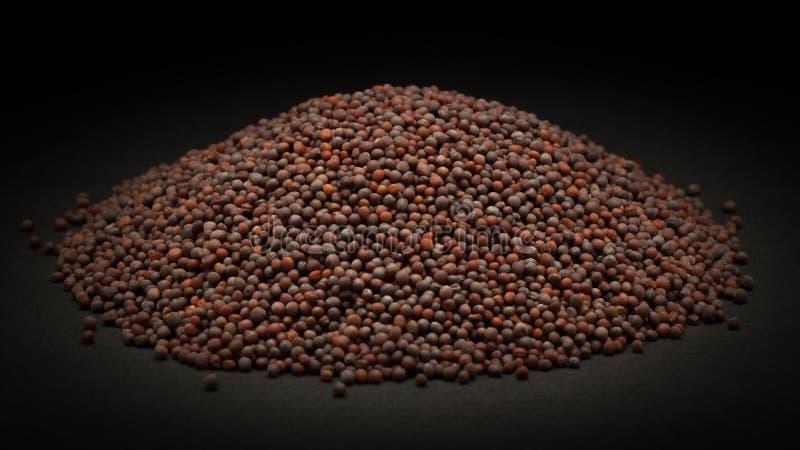 Pile de moutarde brune organique (brassica juncea) images stock