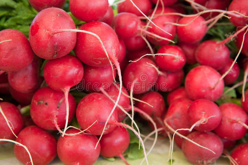 Pile de radis rouges images stock