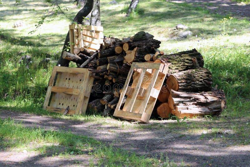 Pile des déchets organiques : Coupez les morceaux d'arbre et les palettes d'euro s'étendant sur un pré photographie stock libre de droits
