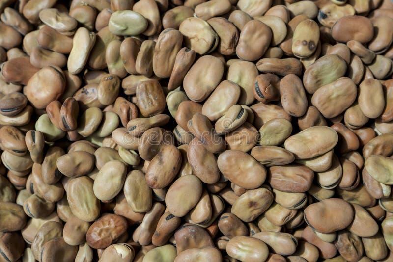 Pile des fèves, fond photos libres de droits
