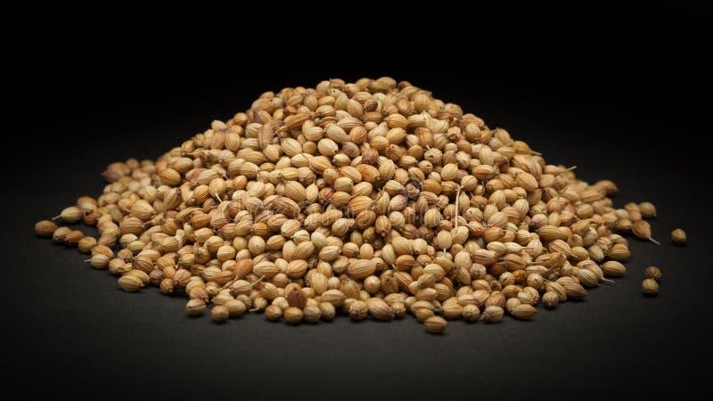 Pile des graines de coriandre sèches organiques (Coriandrum sativum) photographie stock libre de droits
