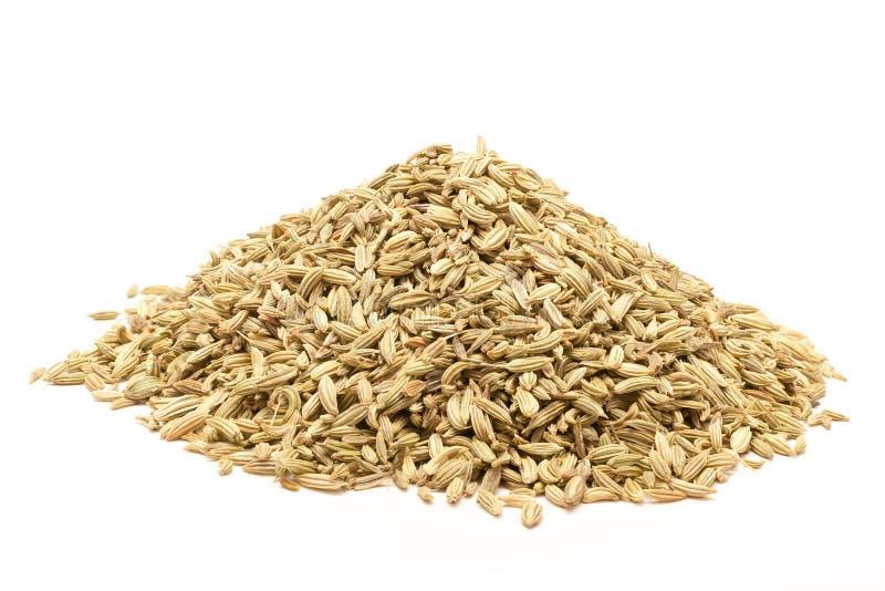 Pile des graines de fenouil organiques photos libres de droits