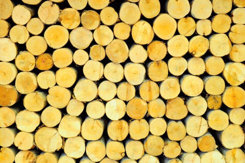 Pile des logarithmes naturels en bois photographie stock libre de droits