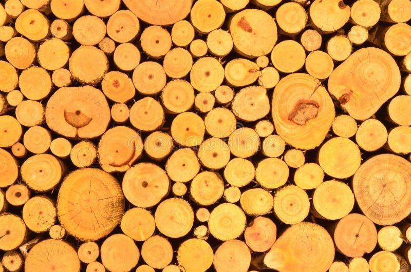 Pile des logarithmes naturels en bois photos libres de droits