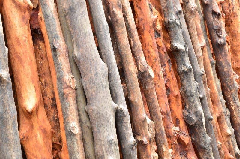 Pile des logarithmes naturels en bois photographie stock