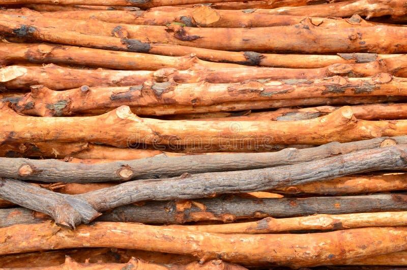 Pile des logarithmes naturels en bois images stock