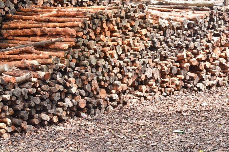 Pile des logs en bois photographie stock