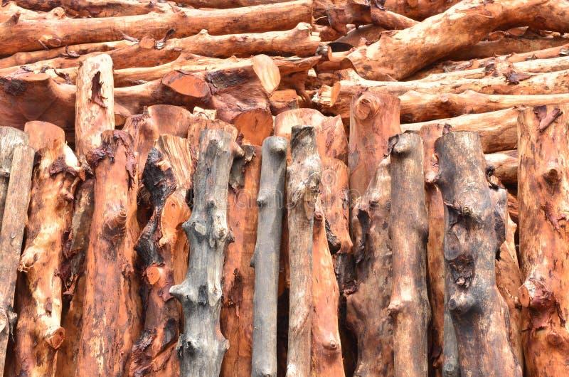 Pile des logs en bois images libres de droits