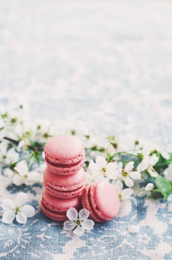 Pile des macarons de framboise et des fleurs de cerise photos libres de droits